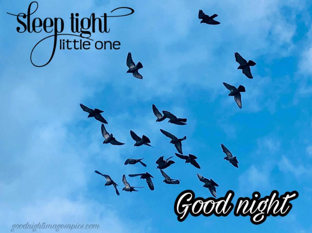 Beautiful Good Night Images
