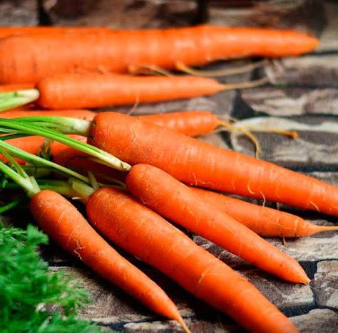 Propiedades de la zanahorias