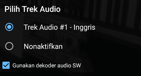 Setting Dekoder Audio SW