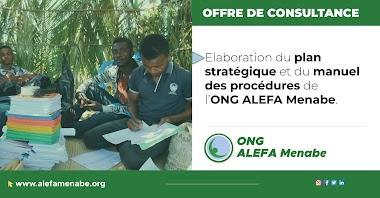 Offre de consultance : élaboration du plan stratégique et du manuel des procédures de l'ONG ALEFA Menabe