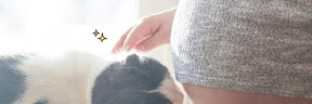 Tips Bumil Menghindari Toksoplasma dari Kucing