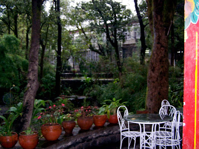 Norbulinga cafe Dharmshala