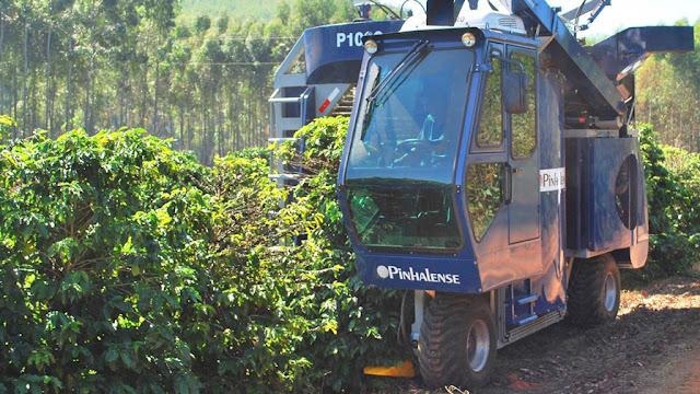 Tecnologia aumenta a produtividade e a rentabilidade do café no Brasil