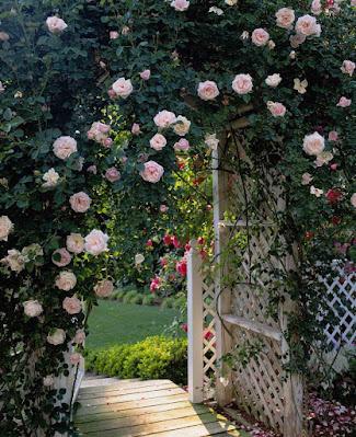 مدخل زهور شكلة جميل اوى
