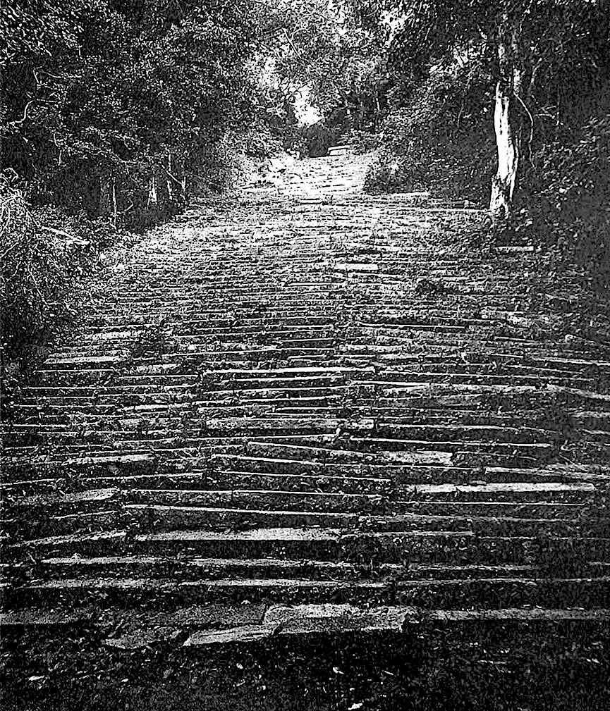 1896 stone stairs, Ceylon, a photograph
