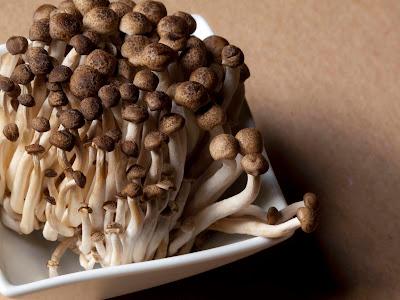 Buy Shimeji Mushroom Online