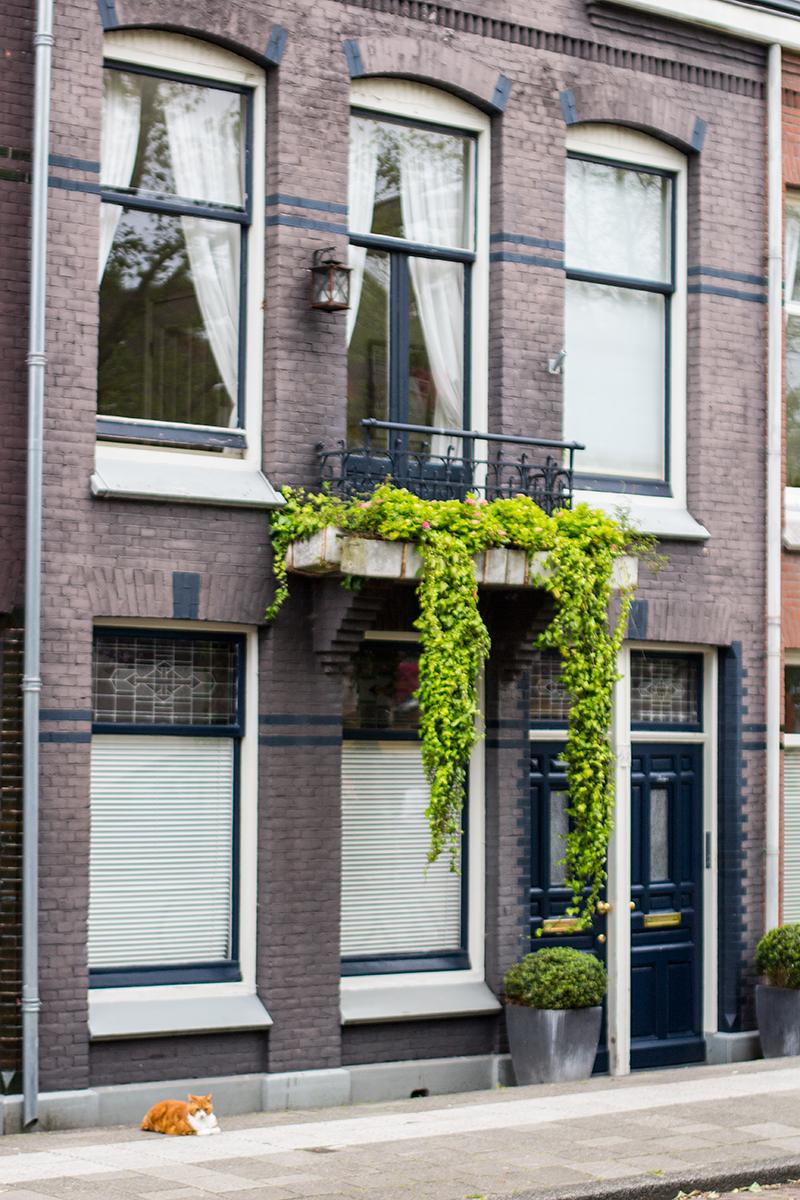 Tulip B&B Amsterdam