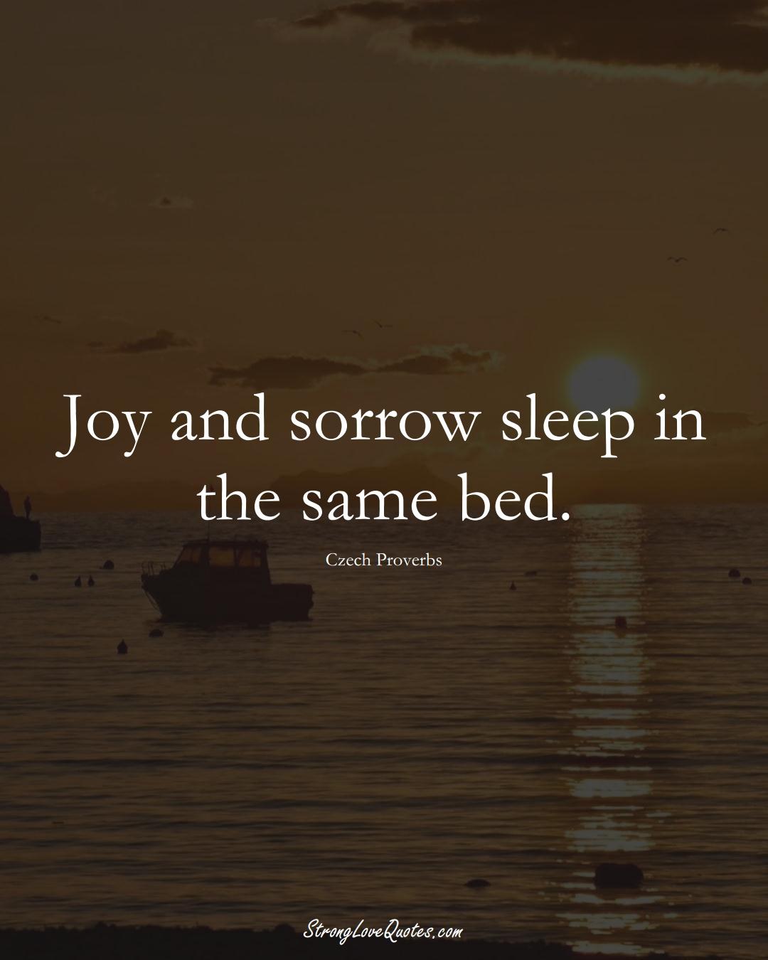 Joy and sorrow sleep in the same bed. (Czech Sayings);  #EuropeanSayings