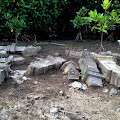 Peusaba Aceh Gusar, Pemusnahan Situs Sejarah di Gampong Pande Berlangsung Masif