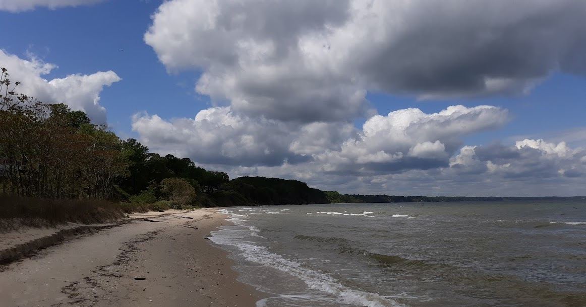 A View from the Beach: Beach Report, Sunday, Sept. 11, 2011