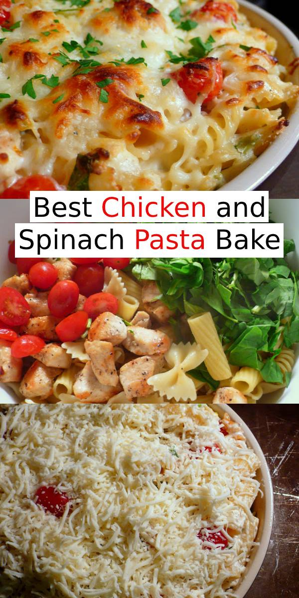 Best Chicken and Spinach Pasta Bake Recipe | It's a very simple pasta bake that could be changed up to suit your tastes and to utilize what you have on hand. Swap out the spinach for some blanched broccoli. Add in some canned artichokes or fresh, chopped mushrooms. Want to make it a little more healthful? Use whole wheat pasta. #Chicken #Spinach #Pasta #Baked #dinnerRecipe #chickenrecipe