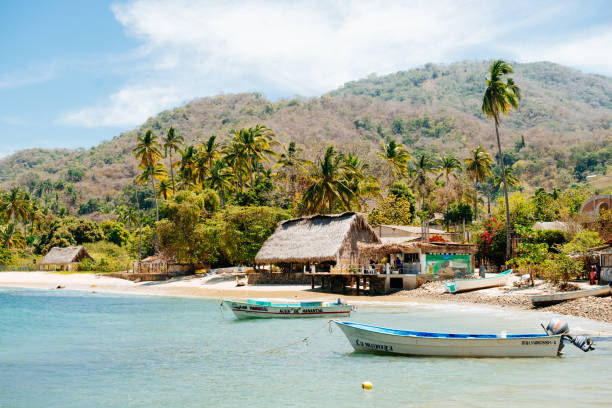 Puerto Vallarta Fishing – An Anglers Paradise