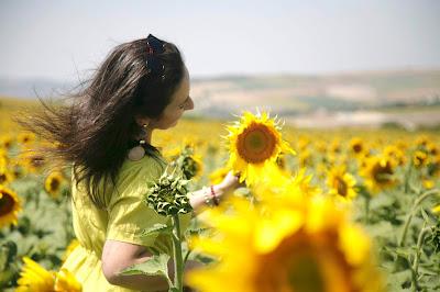 ay çiçeği tarlasında