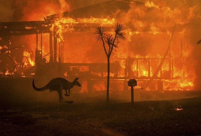 """Co myśle kiedy mówię """"katastrofa klimatyczna już tu jest"""""""