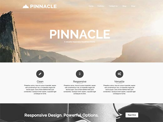Pinnacle Wp Theme