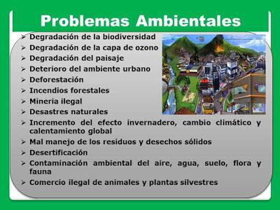 tipos de problemas ambientales