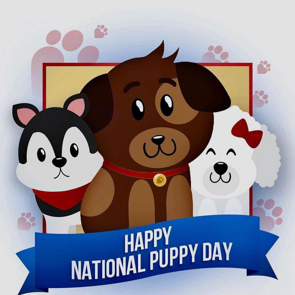 National Puppy Day Wishes For Facebook