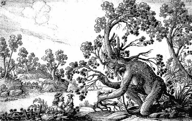 Ciafferi 1600s tree spirit, a drawing