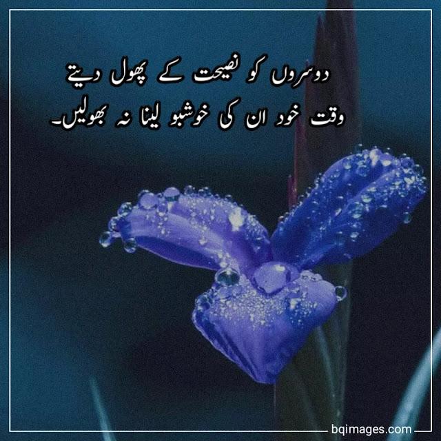 urdu thoughts in urdu