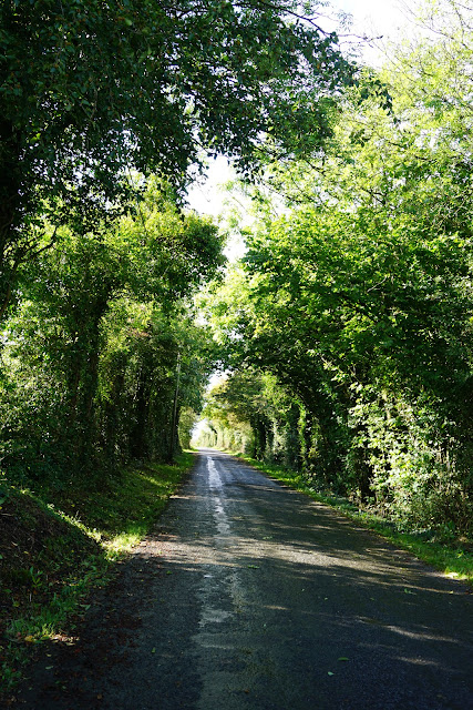 Sliabh Beagh Way, lovely country roads - A Stubborn Optimist - an ecotherapy blog - Carrie Gault 2019