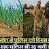 जब उदयपुर के एक प्याज के खेत में पुलिस ने देखा कुछ बेहद ही अविश्वसनीय…udai pur me daphim yani drugs ki kheti