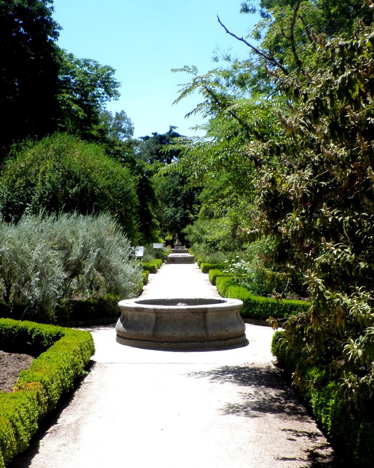 Camino terraza de las Escuelas en el Botánico de Madrid