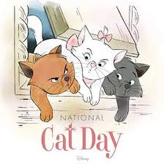 National Cat Day Wishes Lovely Pics