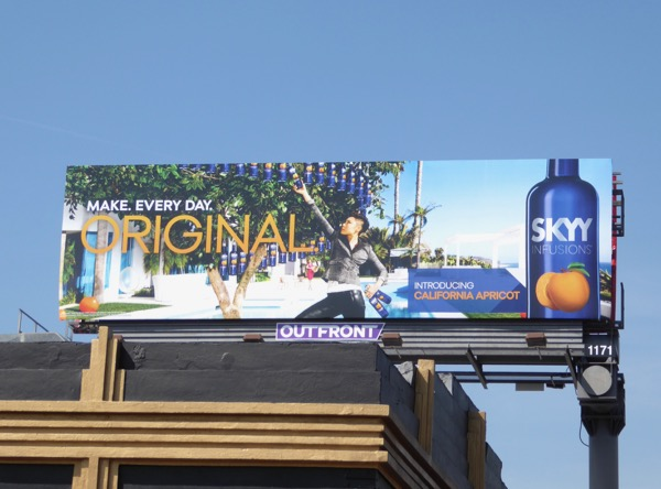 Skyy Infusions Apricot Vodka Original billboard