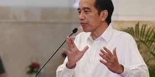 Jokowi Harap Partisipasi di Pilkada 2020 Tetap Tinggi meski di Tengah Pandemi