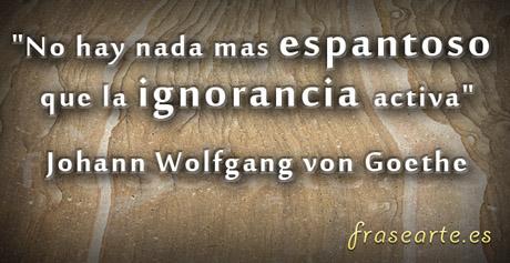 Frases desmotivadoras de Johann Wolfgang von Goethe
