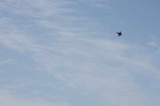 A CF-18 Hornet Takes To The Skies Over Lake Ontario.