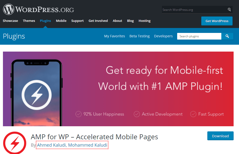 AMP For WP SEO Plugins for WordPress