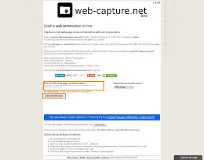 Take screenshot of Long Web Page