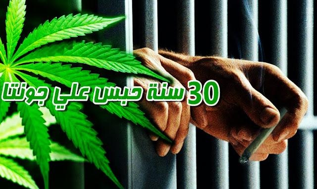 يحدث في تونس: فضيحة! الحكم على 3 شبان بالسجن لـ 30 عاما من أجل استهلاك الزطلة ... المحكمة الابتدائية بالكاف توضح السبب