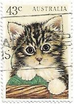Selo Filhote de gato