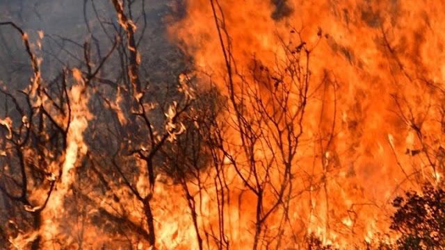 Αργολίδα: Υψηλός κίνδυνος την Παρασκευή 20/8 για πυρκαγιά