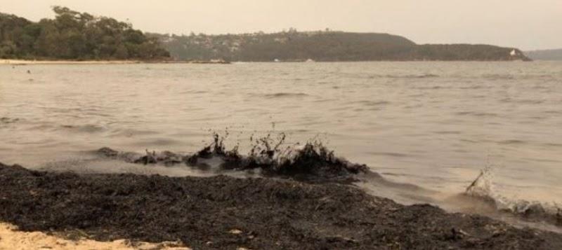 Mga Ferry Halted, Alarms Na-trigger Tulad ng Sydney Choked By Bushfire Usok