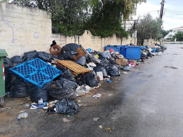 Παρέμβαση της Δημοτικής Συμβούλου Ερμιονίδας Κέλλης Φωστίνη για τα χύδην απορρίμματα στο Πορτοχέλι