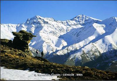 http://www.mapama.gob.es/es/red-parques-nacionales/nuestros-parques/sierra-nevada/visita-virtual/default.aspx