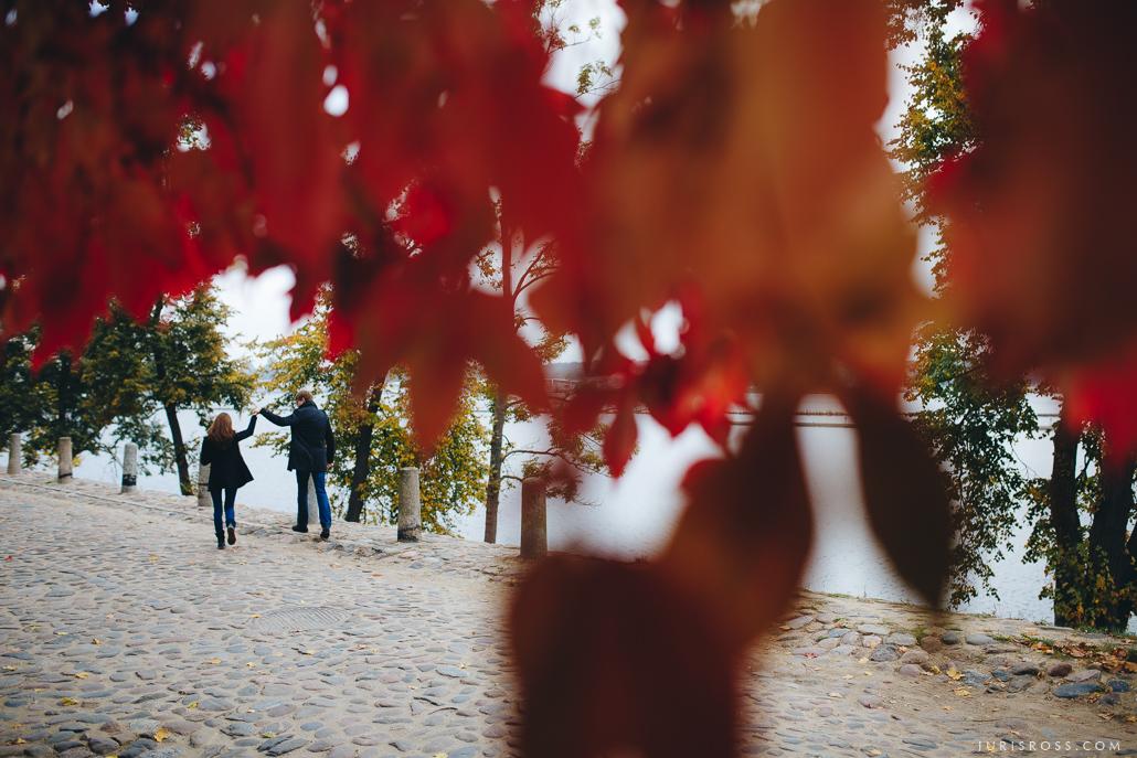 skaists rudens sarkanas lapas