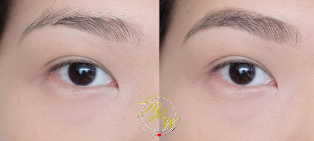 before and after photo of Project Vanity x Ellana Lifeproof Eyebrow Gel Review by Nikki Tiu