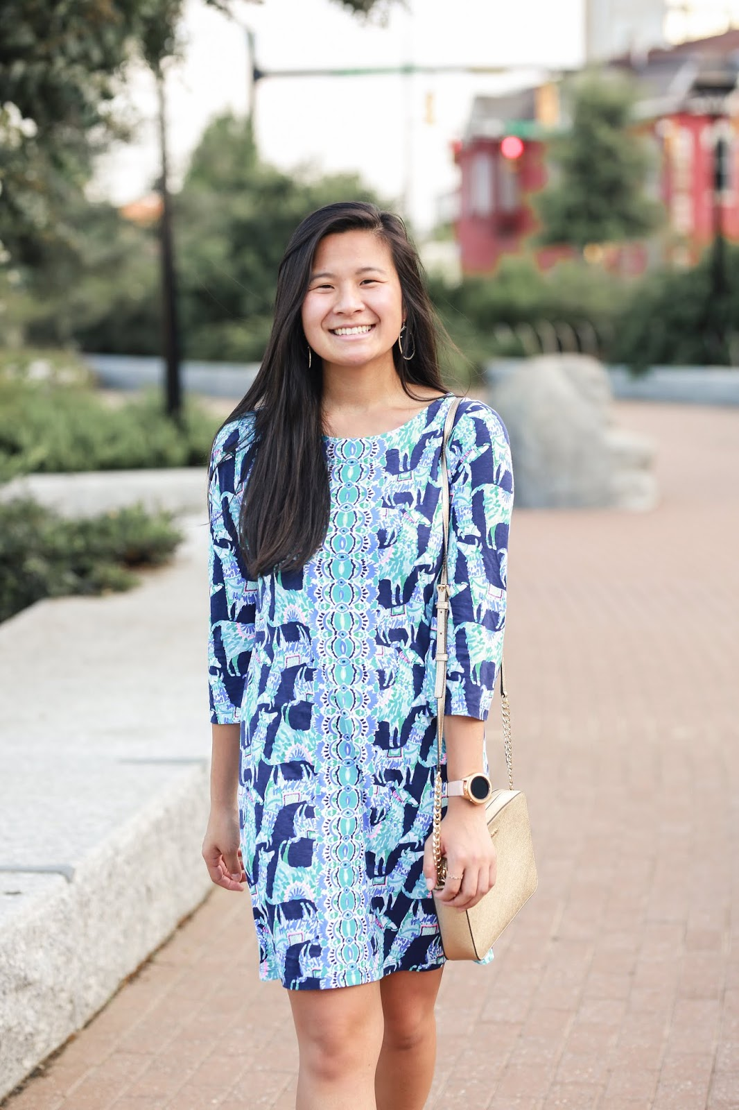 lilly pulitzer bay dress in alpaca my bags | Wearing Lilly pulitzer in the fall