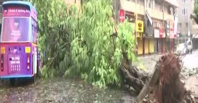 લાઇવ સાઇક્લોન  સમાચાર: ગોવા કિનારે ચક્રવાતની વાવાઝોડા, 5 મોત ગુજરાતને હાઈએલર્ટ પર રાખવામાં આવ્યું છે.