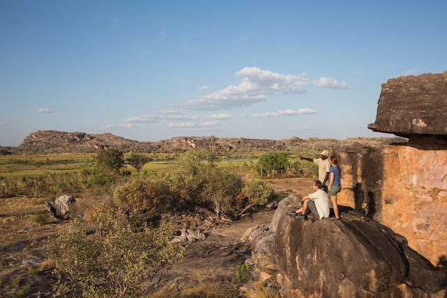 THE ANSWER TO MANAGING AUSTRALIA'S BUSHFIRE RISK COULD LIE IN TRADITIONAL ABORIGINAL PRACTICES