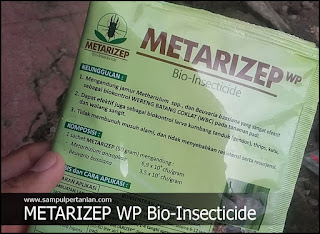 METARIZEP WP Bio-Insecticide