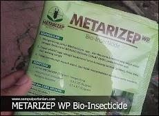 METARIZEP WP Bio-Insecticide