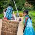 பெருந்தோட்ட பெண்களின் பின்தங்கிய கல்வி நிலமை