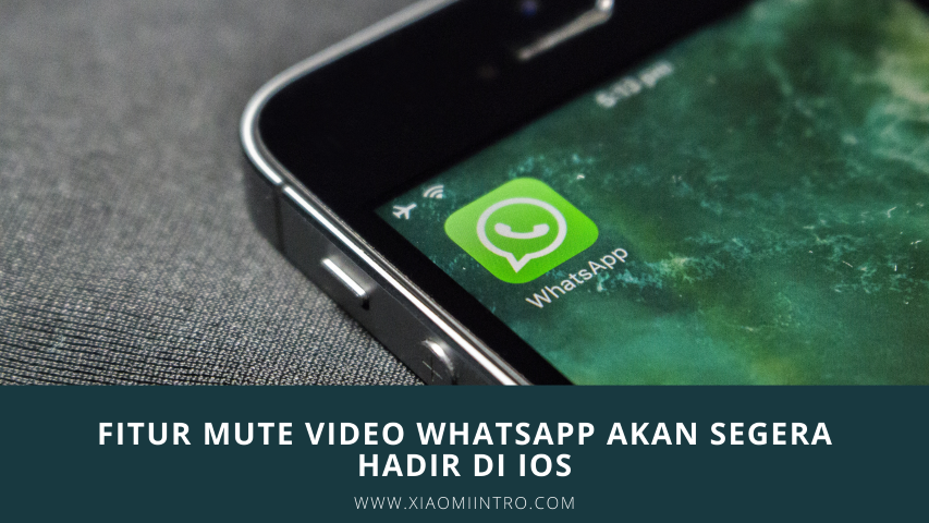 Fitur Mute Video Whatsapp Akan Segera Hadir Di iOS