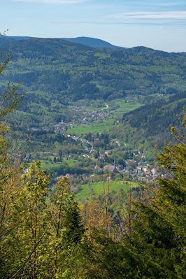 Premiumwanderweg Murgleiter | Etappe 1 von Gaggenau nach Gernsbach | Wandern nördlicher Schwarzwald 23
