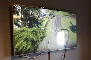 Large wall mounted TV with pathway amongst greenery.